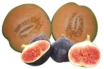 Fig and Melon Large 4 oz Premium Refill
