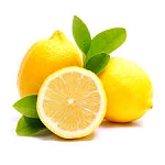 Lemon Drops Quart Signature Refill
