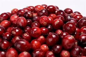 Cranberry Large 4 oz Signature Refill
